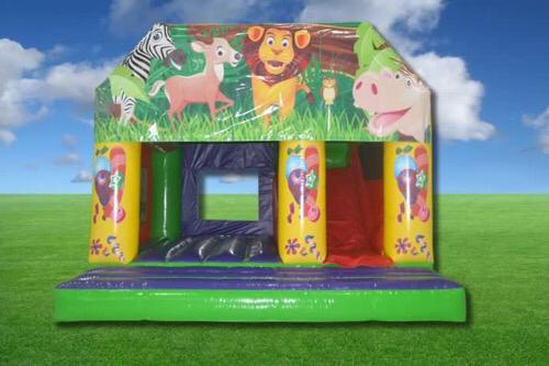 Large Combi Bouncy Castle & Slide